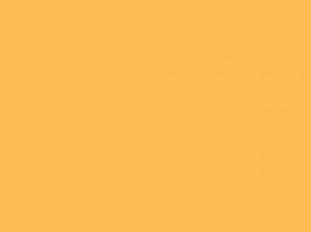 Clementine - Solid Orange Webcam Backdrop