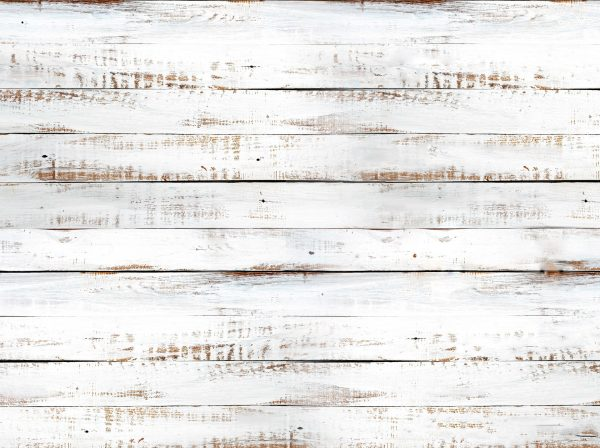 Shiplap White Wood Backdrop - Full Image
